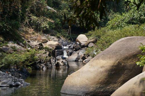 Senderismo en el Parque Nacional Khao Sok