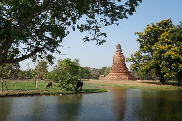Ruta en bici | Historic City of Ayutthaya