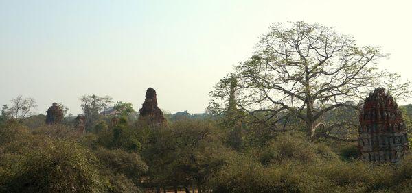 Mirador Wat Ratburana | Ciudad Histórica de Ayutthaya, Tailandia