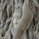 Historic City of Ayutthaya | Thailand
