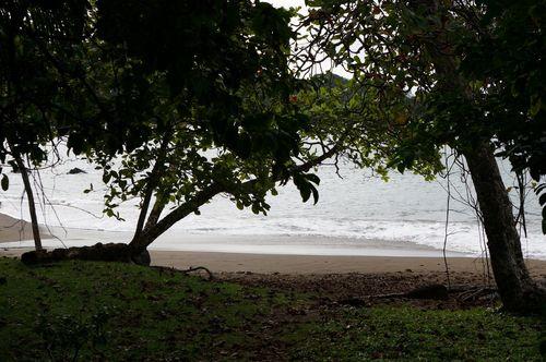 Playa Cocalito, Drake | Parque Nacional de Corcovado, Costa Rica