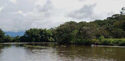 Río Sierpe | Parque Nacional de Corcovado, Costa Rica