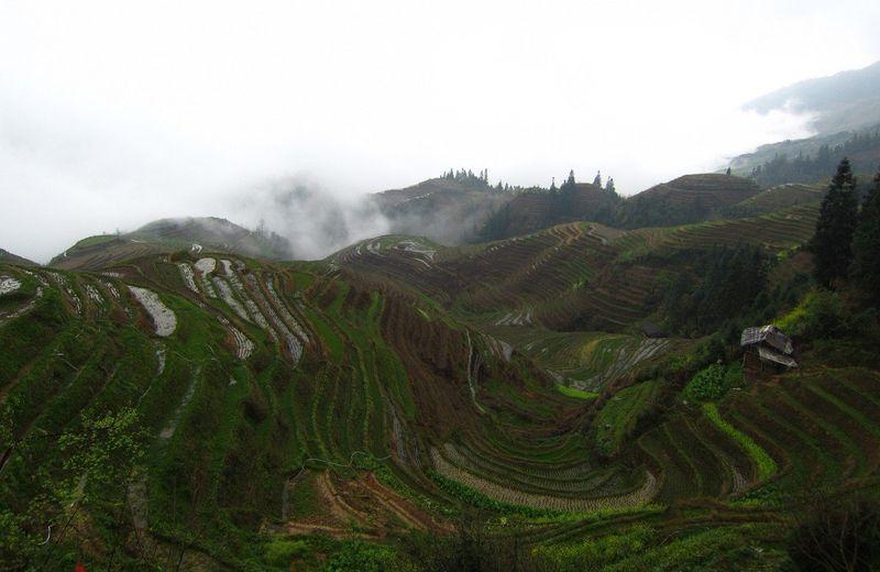 Terrazas de arroz de Longsheng | Itinerario 20 días China