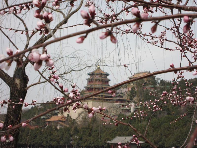 Palacio de Verano | Itinerario 20 días China