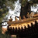 Cómo organizar un viaje a China