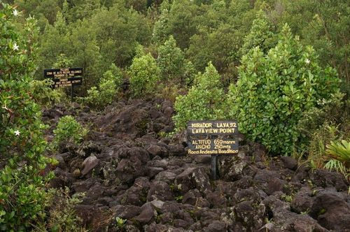 Sendero | Volcán Arenal, La Fortuna