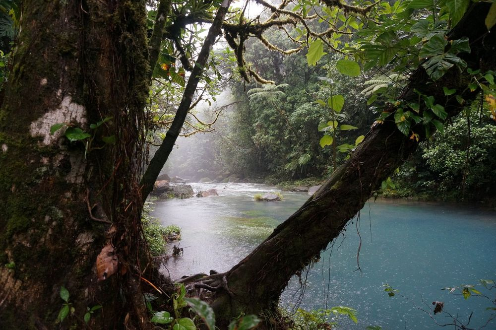 Rio Celeste - Parque Nacional Volcán Tenorio, Costa Rica