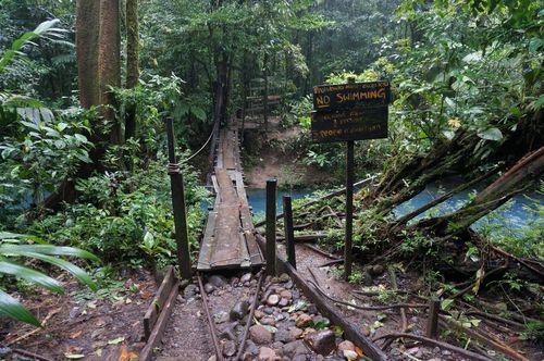 Puente sendero Rio Celeste - Parque Nacional Volcán Tenorio