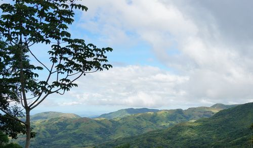 Carretera Santa Elena - Manuel Antonio - Costa Rica