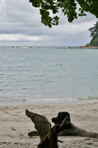 Playa en Parque Nacional Manuel Antonio - Costa Rica