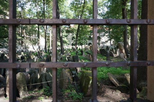Antiguo cementerio judío | Praga