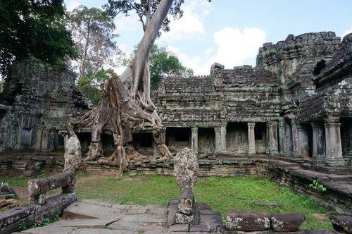 Preah Khan | Días en Siem Reap Guía