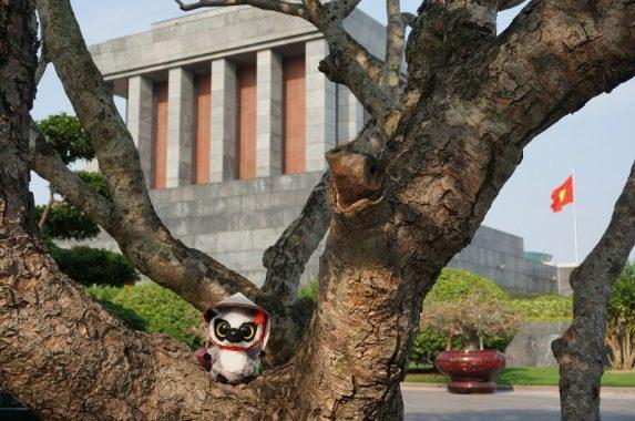 Lemur en el Mausoleo de Ho Chi Minh, , Vietnam