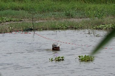 Hombre pescando en Cam Kim - Hoi An