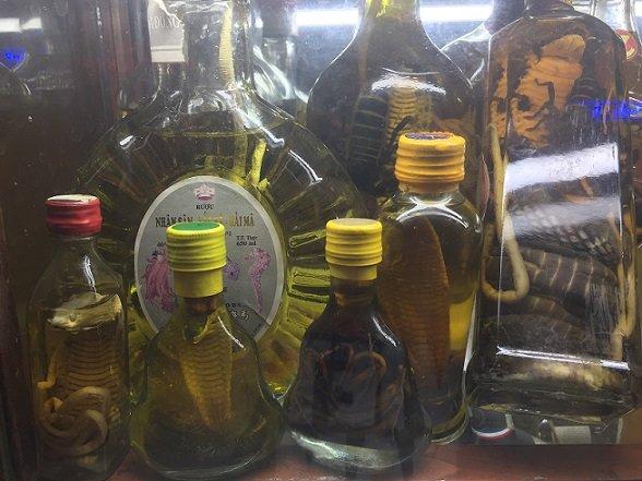 Botellas de licores con serpientes dentro - Vietnam