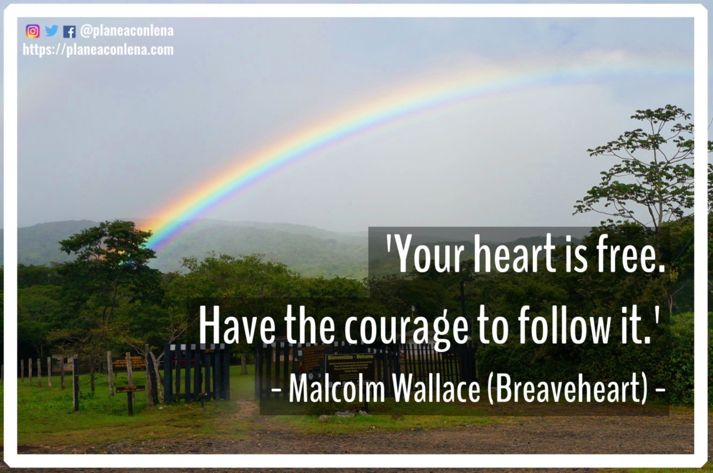 'Your heart is free. Have the courage to follow it. '- Malcolm Wallace (Braveheart)