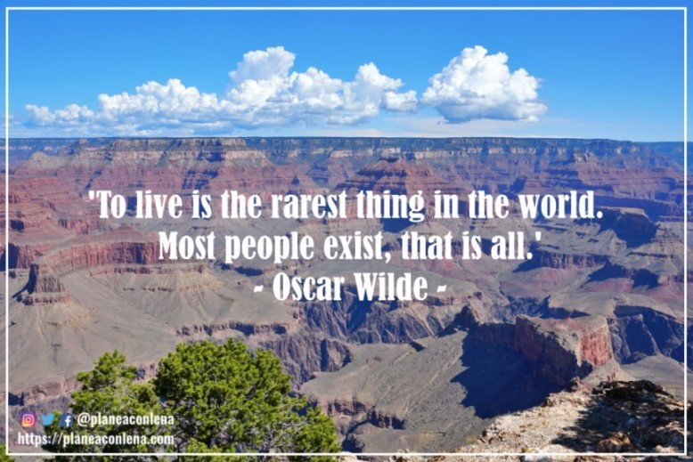 'To live is the rarest thing in the world. Most people exist, that is all.' - Oscar Wilde