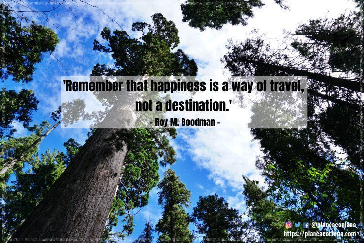 'Remember that happiness is a way of travel, not a destination.' - Roy M. Goodman