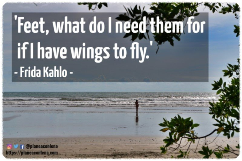'Feet, what do I need them for If I have wings to fly.' - Frida Kahlo