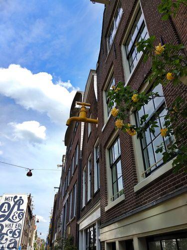 Paseo por Jordaan | Que hacer en Amsterdam