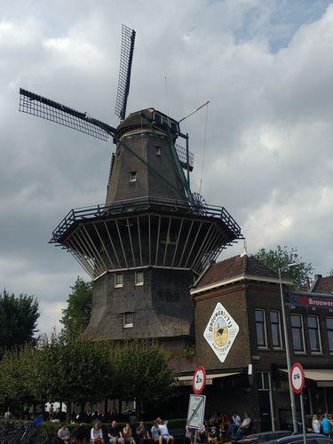 Brouwerij 't IJ | Que hacer en Amsterdam y que no