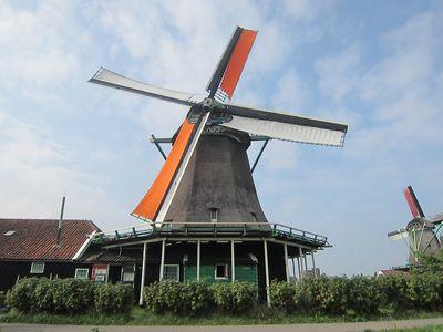 Molino en Zaanse Schans | Que hacer en Amsterdam